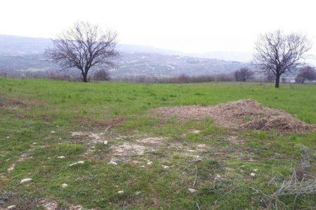 Продажа: Земля сельхозназначения, Agios Dimitrianos, Пафос, FC-33612