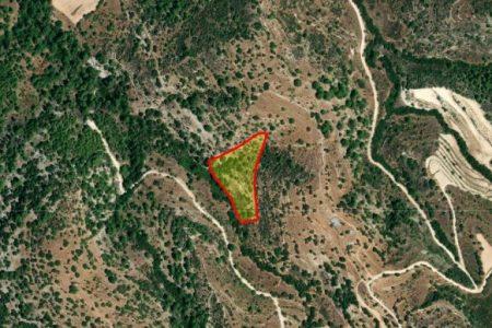 Продажа: Земля сельхозназначения, Мусере, Пафос, FC-34476