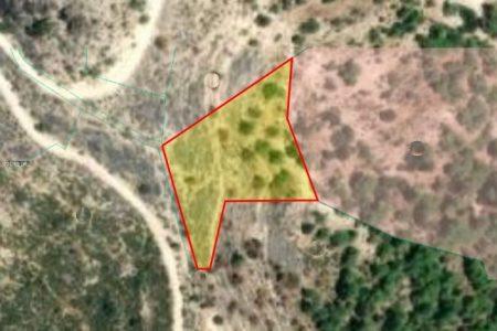 Продажа: Земля сельхозназначения, Мусере, Пафос, FC-34478