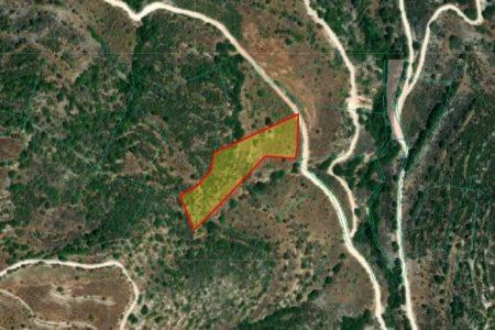 Продажа: Земля сельхозназначения, Дора, Лимассол, FC-34503